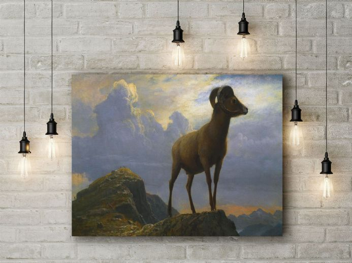 Bierstadt, Albert: Study of a Bighorn Ram. Fine Art Canvas.